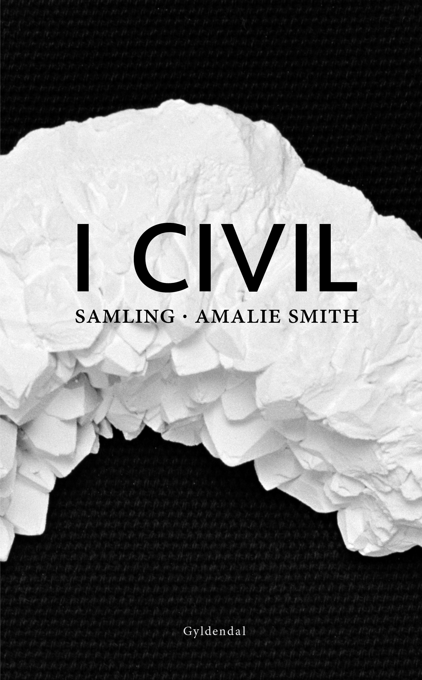 Amalie Smith: I civil (2012)