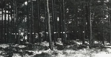 Breivik_forside