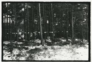 (1) 23 Level (Snowballs) av Bård Breivik.
