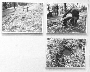(7) Et hull i Bergen og hullet i Oslo ab Bård Breivik og Gerhard Stoltz (1979).