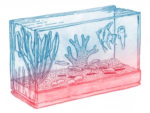 Bok akvarium
